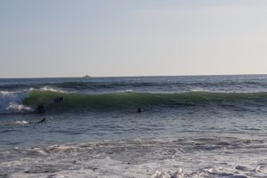 Section Surf 2021-2022-001