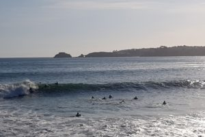 Section Surf 2021-2022-002