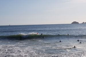 Section Surf 2021-2022-003